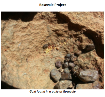 Rosevale project gold found in gully